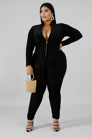 Sheer Stripe Jumpsuit