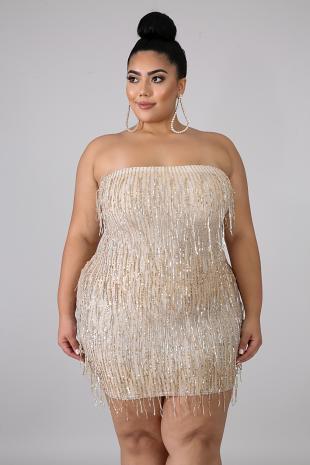 Sequin Fringe Tube Dress