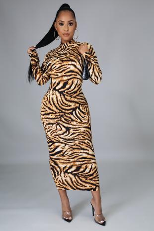 A Whole Mood Dress