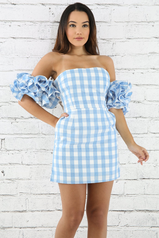 Pleated Sleeve Checker Dress