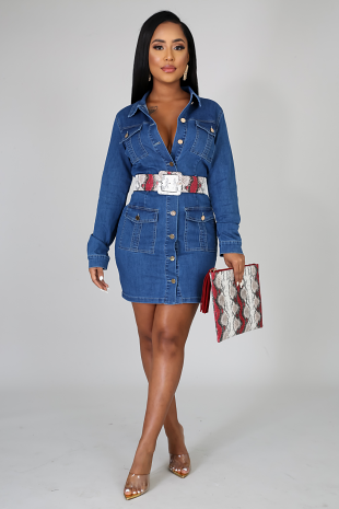 You Thought Denim Dress