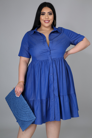 Pauline Denim Dress