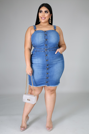 Dailey Denim Dress