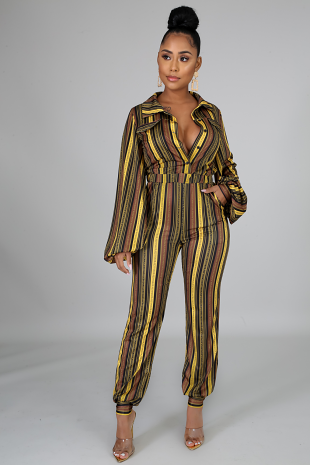 All Strip Jumpsuit