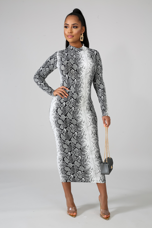 Shades Midi Dress