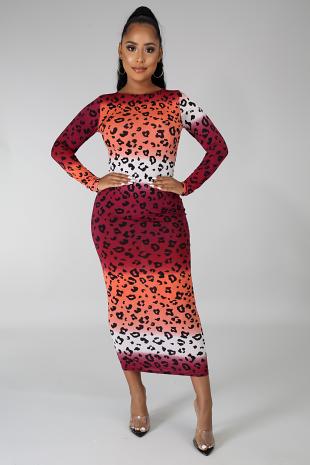 Favorite Print Dress