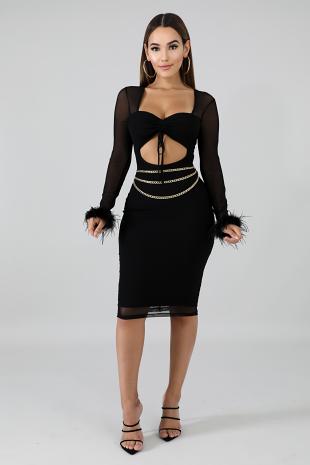 Sheer Feather Body-Con Dress