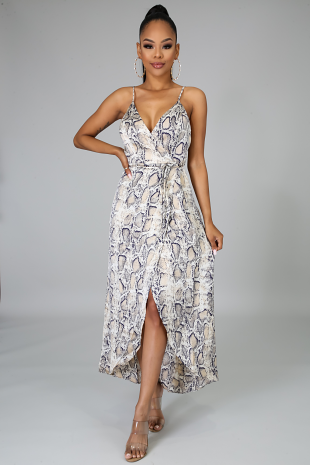 Silky Sassy Long Tail Dress