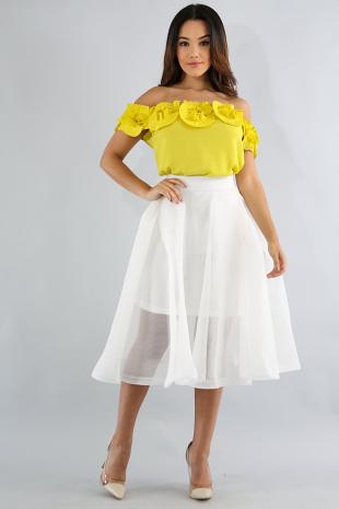 Mesh Flare Skirt