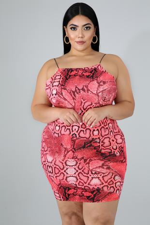 Wild Stripe Dress