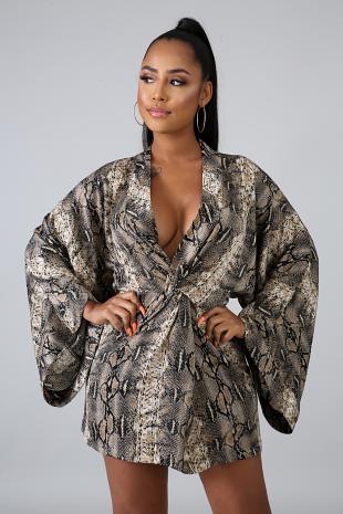 Kimono Sass Dress