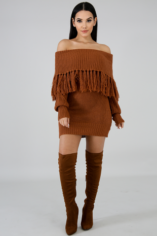 Fringe Cowl Neck Sweater Dress