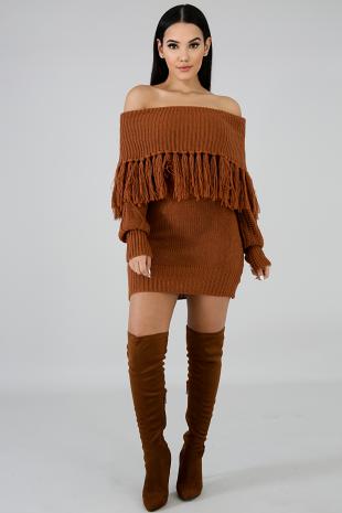 Fringe Cowl Neck Sweater Dress