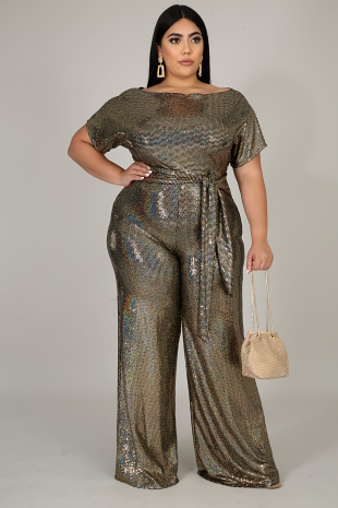 Shine In The Light Jumpsuit