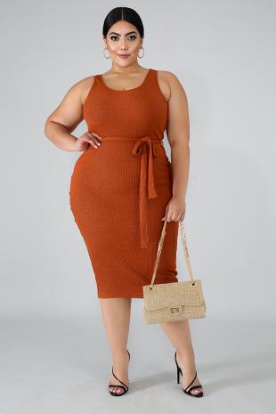 Shine Knit Midi Dress