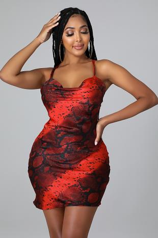 Daring Babe Dress
