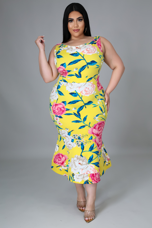 Sunshine Craving Dress