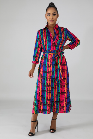 Color Maze Flare Dress