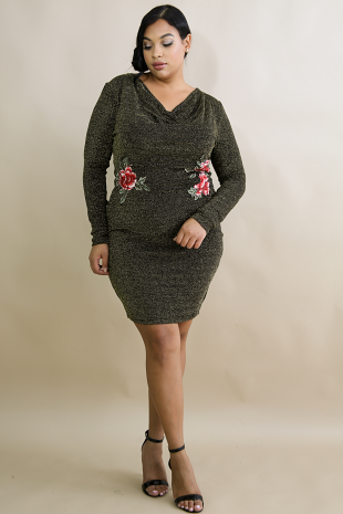Drape Embroidered Glitter Dress