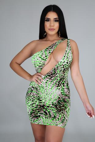 Neon Wild Stripes Dress