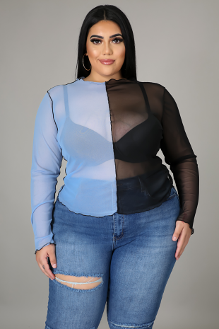 Sheer My Sleeve Top