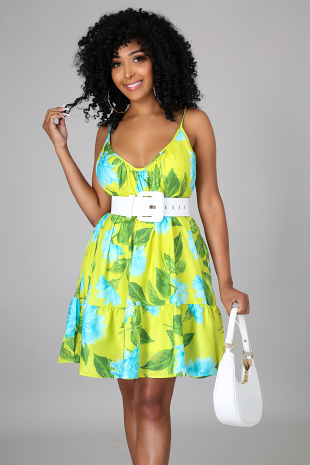 Too Little Time Dress
