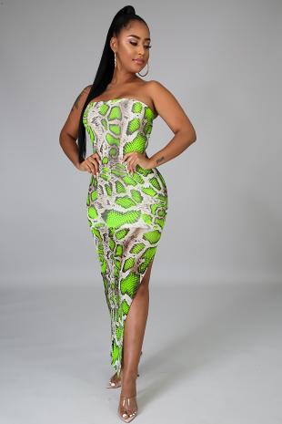 Tube Sheer Snake Body-Con Dress